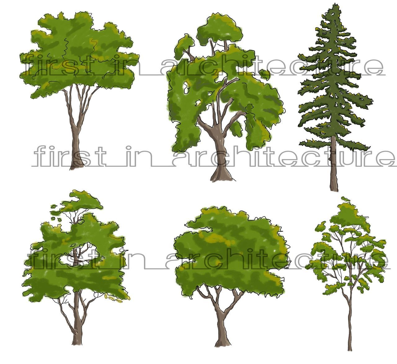 Colour Photoshop Trees Trees Pinterest Tree Sketches