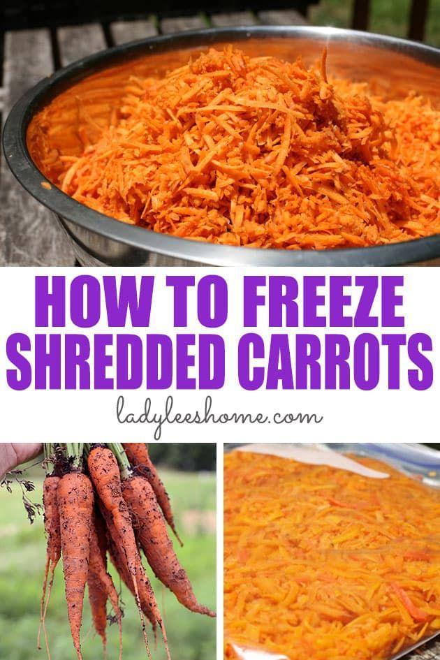 How to Freeze Shredded Carrots | Recipe in 2020 | Shredded ...