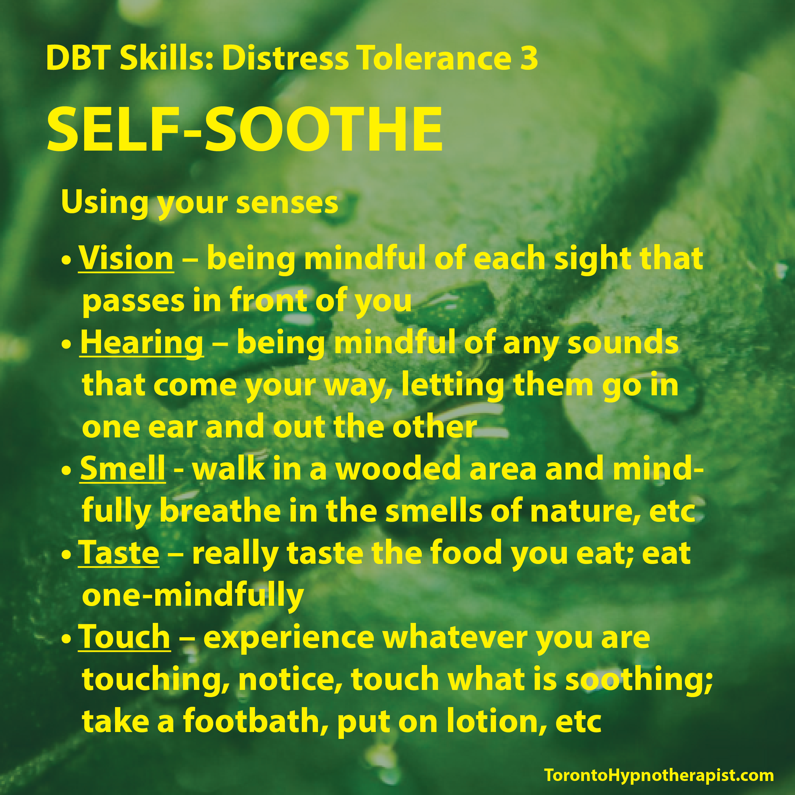 Pin By M Dudley On Dbt