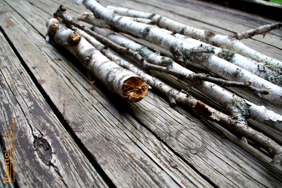 White Birch Branches  Natural Salvaged Rustic by rusticcraftdesign, $58.00
