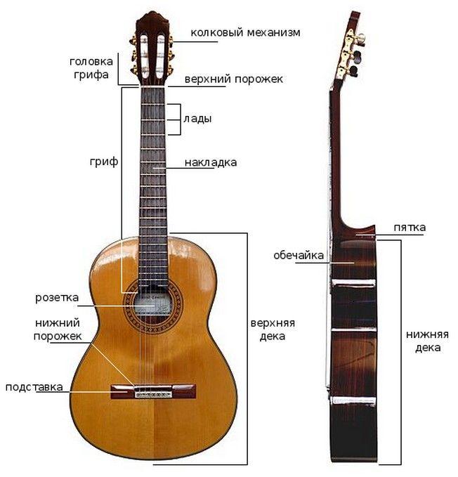схема строения гитары счету спортсмена нет