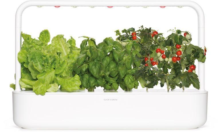 Indoor Herb Garden Kit And Refills Click Grow Herb 400 x 300
