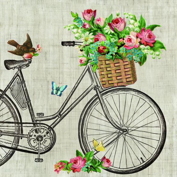 Servítky Robin on Bike
