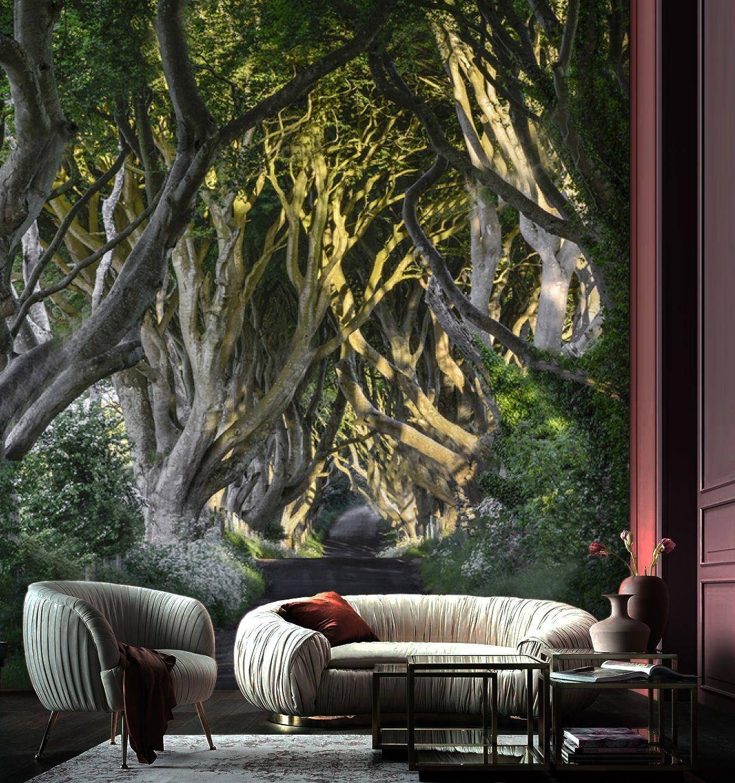 Wallpaper Forest Design Living Room Design Large Photo Wall Mural Vinyl Self Adhesive Wallpaper Forest Design Mural