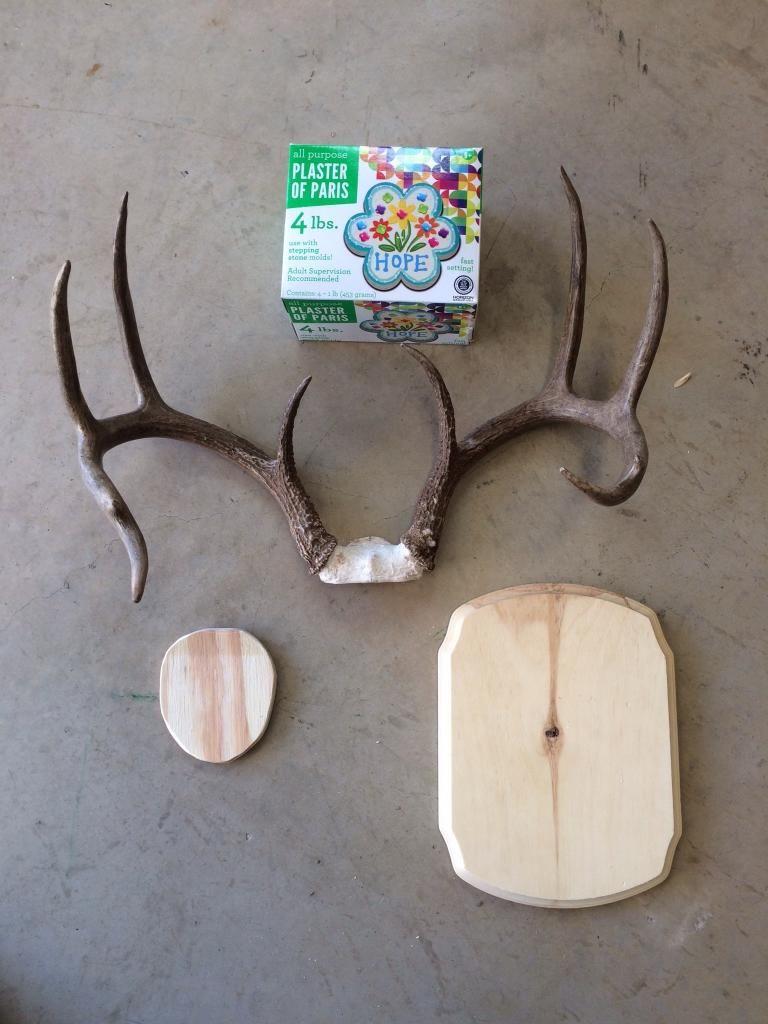 Diy Antler Plaque Project Pic Heavy Diy Antlers Deer Antlers Diy Deer Antler Crafts