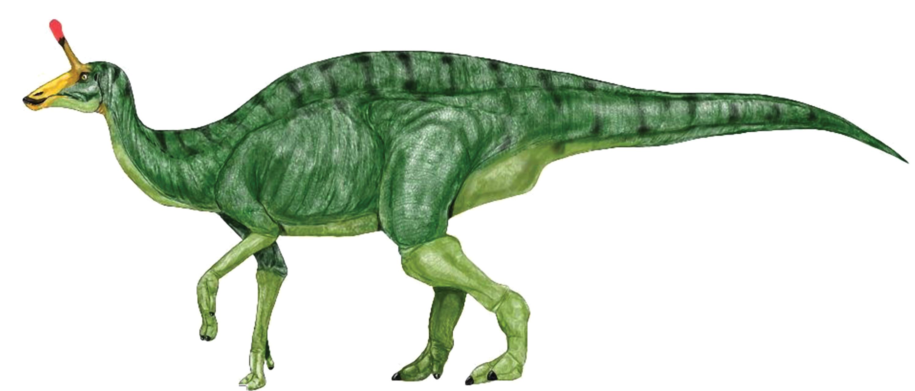 dinosaur clipart - Google Search | Dinosaurs Silhouettes, Vectors ...