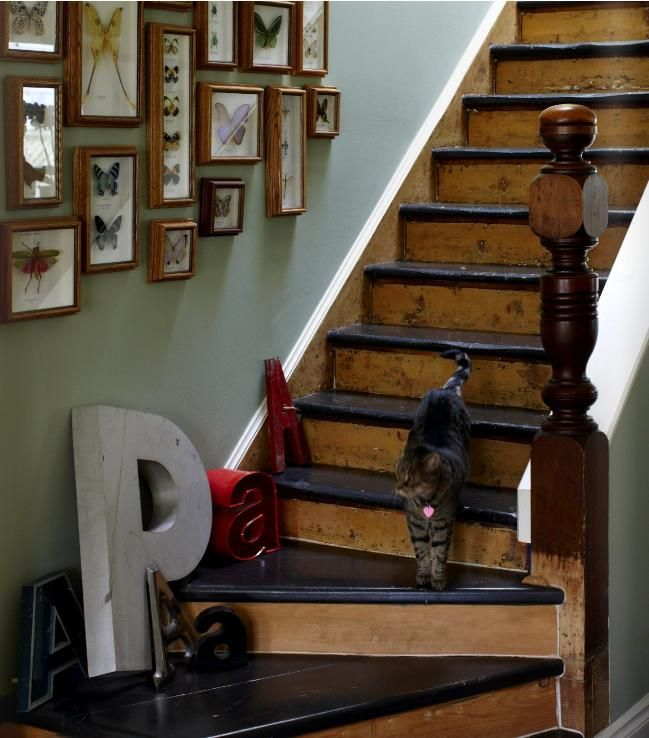 25 Pretty Painted Stairs Ideas: A Cute And Pretty House With A Nod To Mid-century Modern