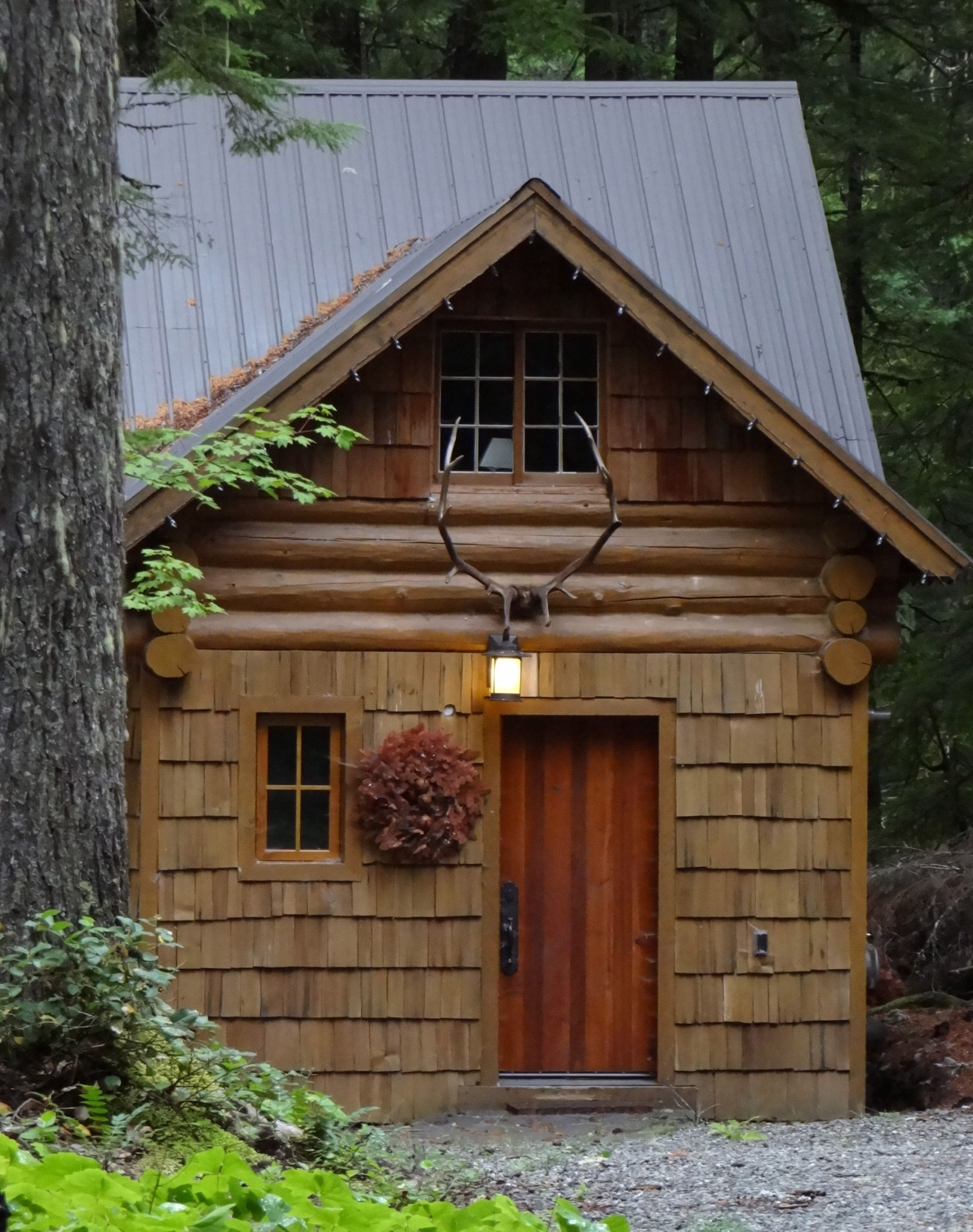 metal roof, log, shake, cozy, Cabin in the woods
