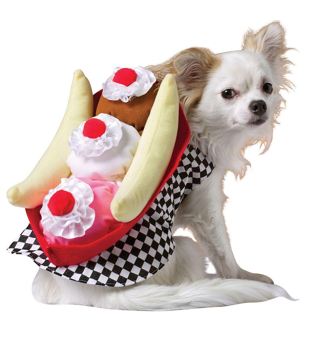 Banana Split Dog Halloween Costumes Pet Halloween Costumes Dog