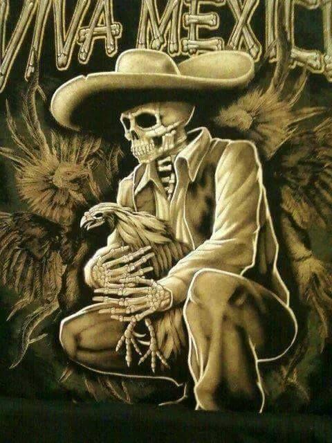 Pin by jorge garcia on GALLOS DE COMBATE | Chicano art ...