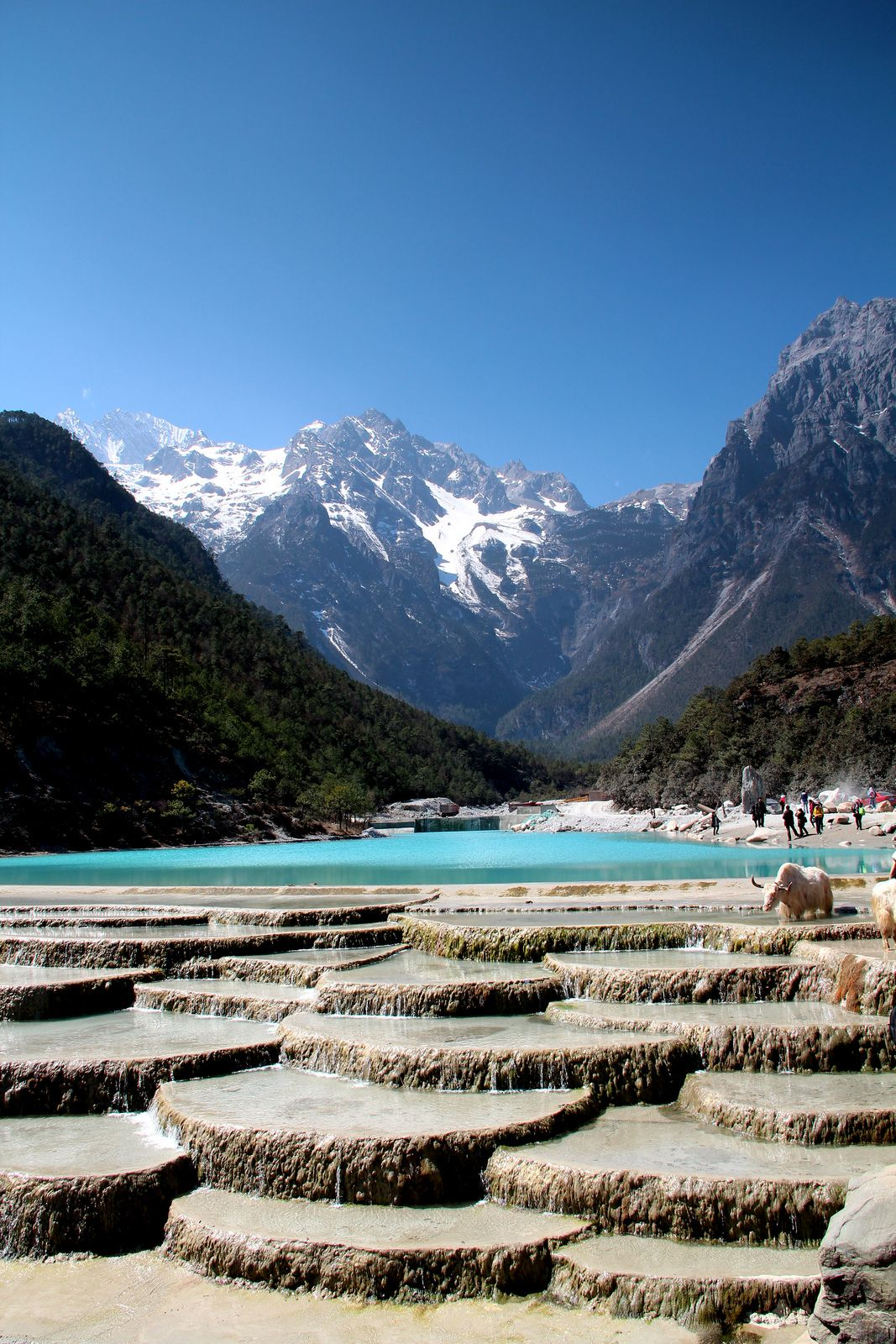 Pakistanische Küche Wiki Pin By Kathi On Blue Moon Valley China Lijiang China China Travel