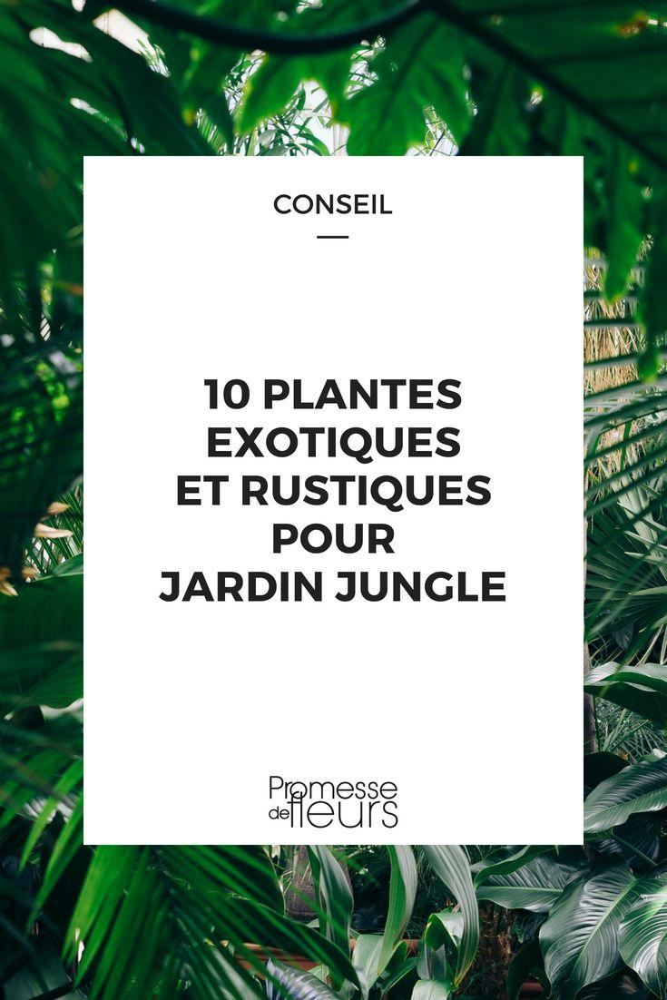 Plantes Pour Jardin Contemporain 10 plantes exotiques et rustiques pour jardin jungle