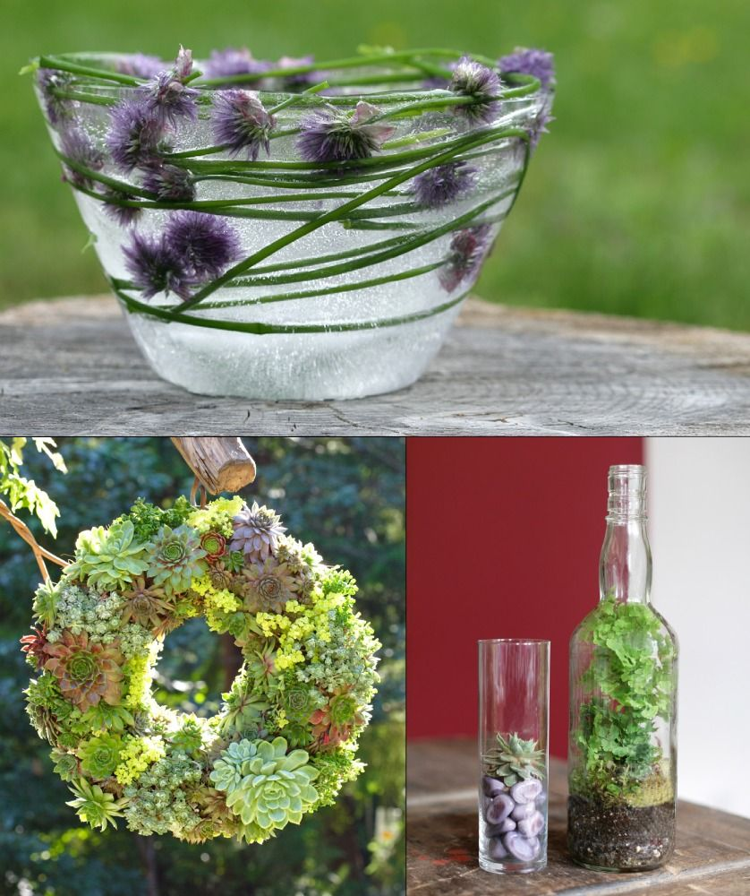 Edible herb ice bowl, succulent wreath, and garden in a bottle ...
