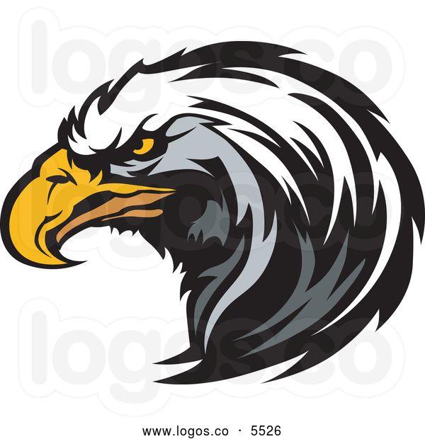 Falcon Logo Vector Google Search Eagle Mascot Vector Illustration Eagle Vector