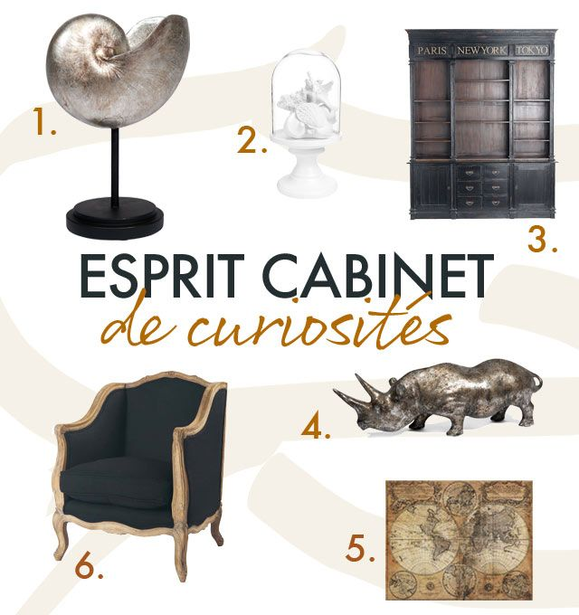 esprit cabinet de curiosit s planches d co pinterest cabinet de curiosit curiosit s et. Black Bedroom Furniture Sets. Home Design Ideas