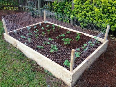 Diy Raised Garden Bed With En Wire To Prevent Rabbits From Getting In