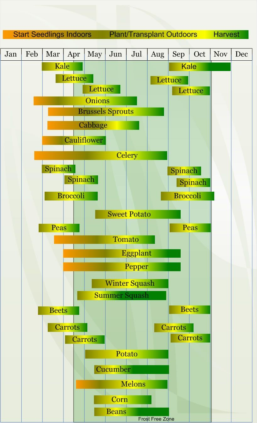 Look Up You Hardiness Zone And Get A Vegetable Planting Schedule! Zone 7 Vegetable  Planting Calendar Describing Approximate Dates To Start Vegetable Plants ...