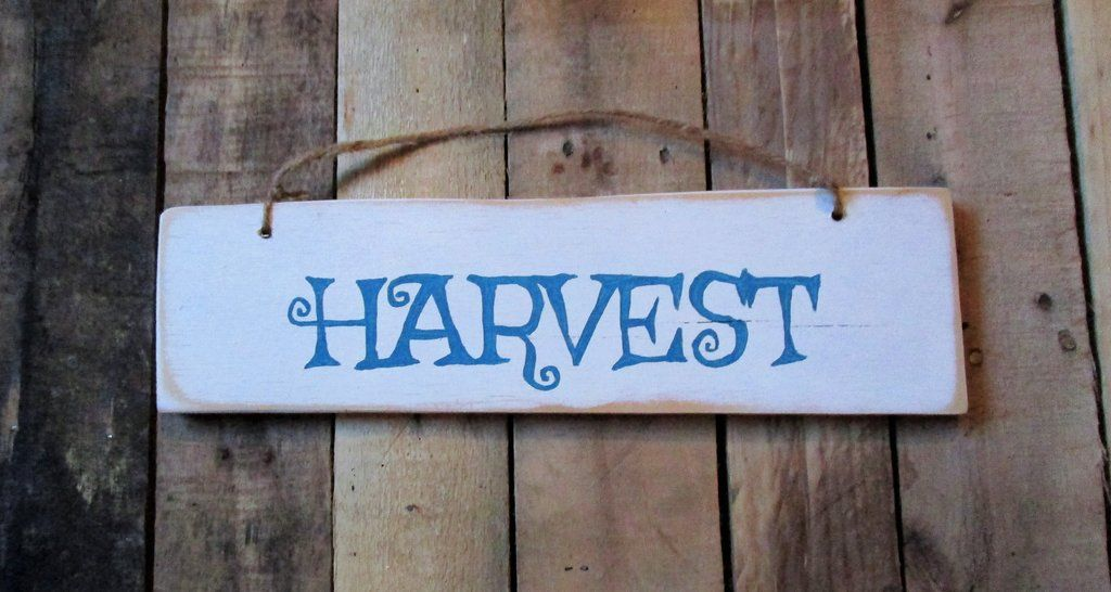 Harvest Country Rustic Wood Sign Wood Plaque Wooden Sign Harvest Gather Grateful Blessed Thankful Ru Rustic Wood Signs Rustic Decor Home Decor Australia