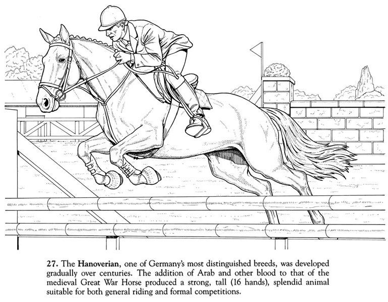 Horse Coloring Page of Hanoverian Champion | Printable Coloring ...