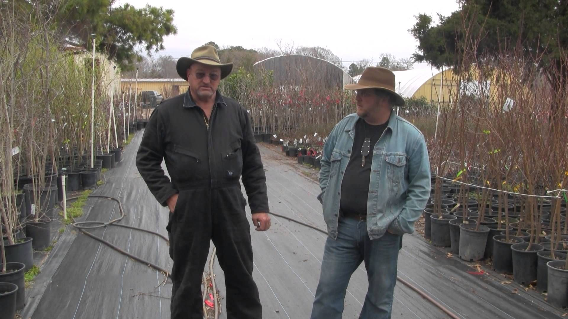 an interview with bob wells lindale texas near tyler
