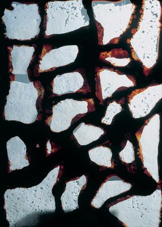 337 |   mosaico de crocant de coco y chocolate (El Bulli, 1995, petits fours)