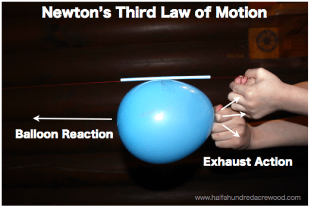 Newton S Laws Of Motion Simplified Half A Hundred Acre Wood Newtons Laws Of Motion Newtons Laws Newtons Third Law Of Motion