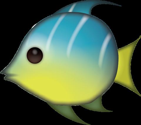 Tropical Fish Emoji [Free Download IOS Emojis] | Dibujos bonitos, Emojis, Dibujos