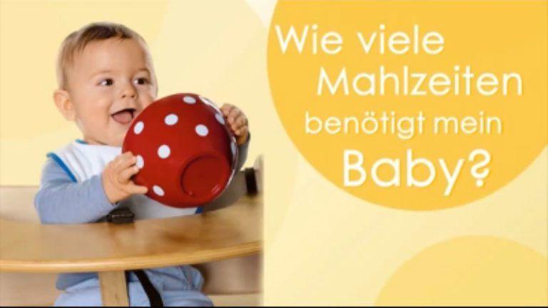 Wieviel Mahlzeiten Baby 8 Monate