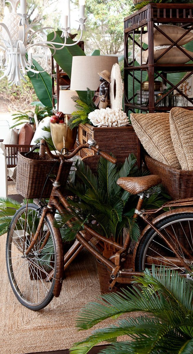 Out stunning brown rattan bike in the tropical windows of