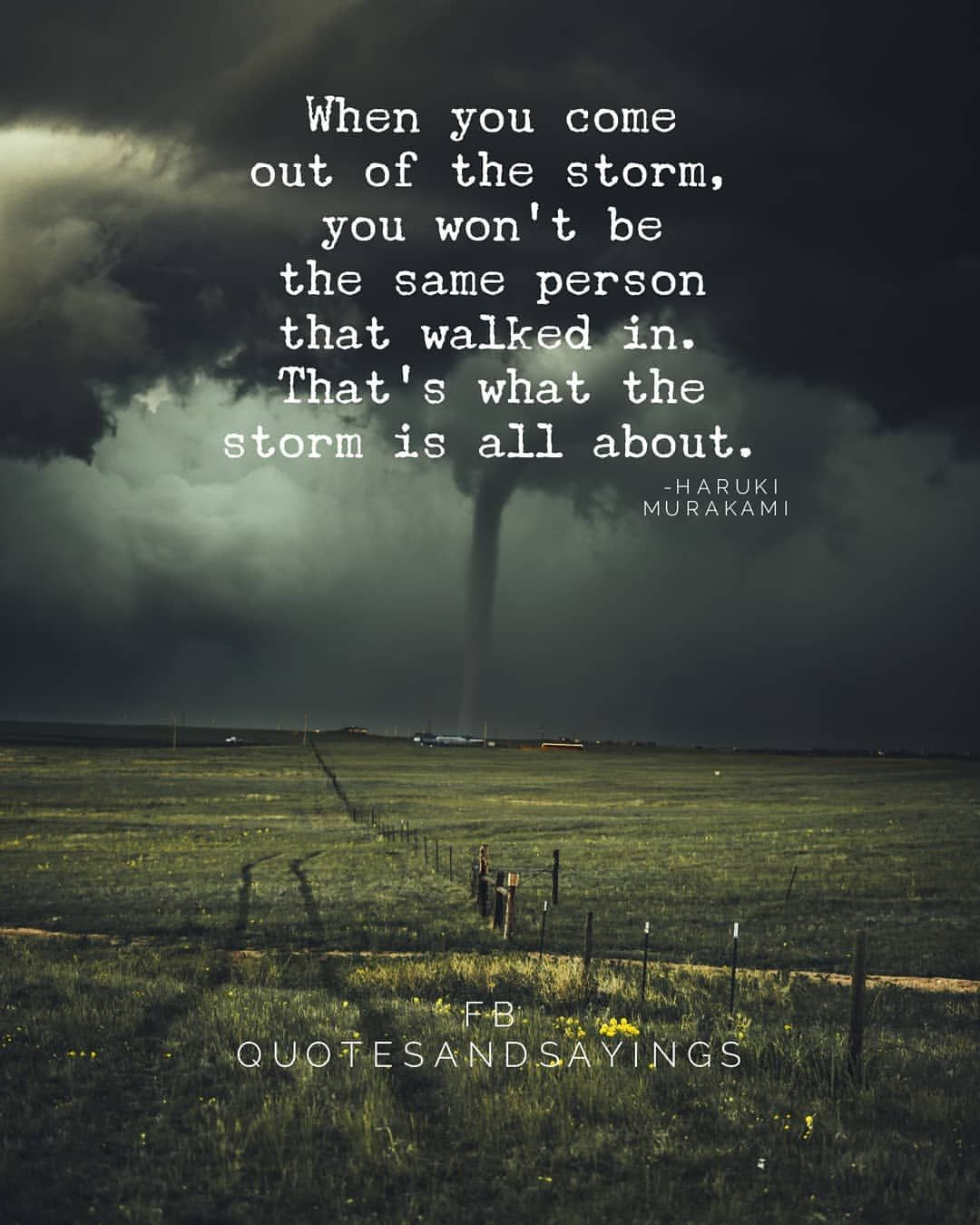 When You Come Out Of The Storm You Wont Be The Same Person That
