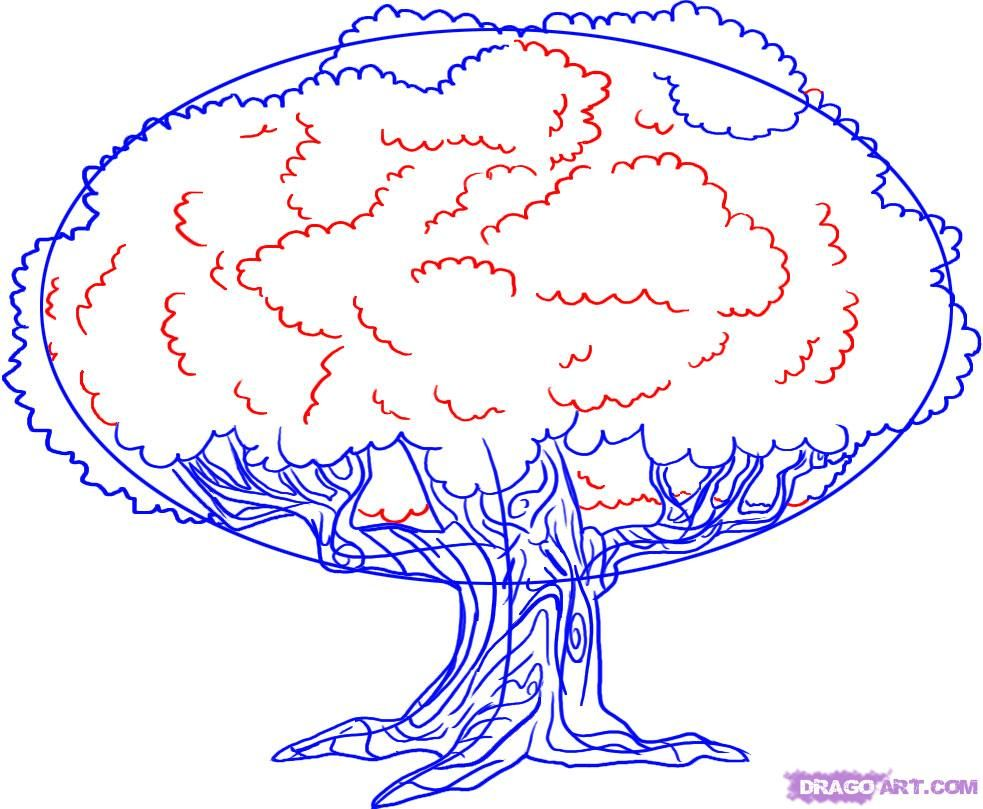 How to draw oak 57