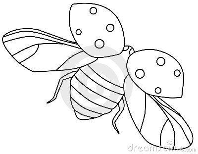 Pin on Ladybug