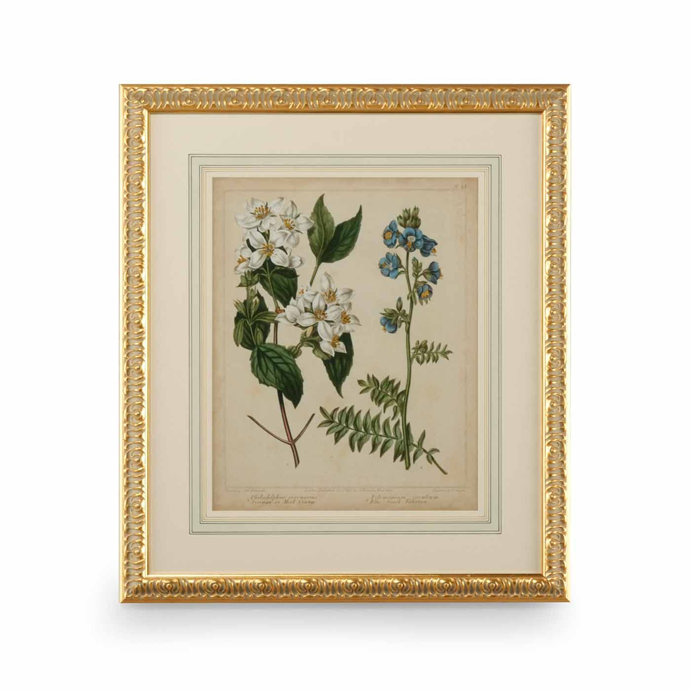 Chelsea House Cottage Florals I Giclee Print Chelsea House Floral Prints Cottage