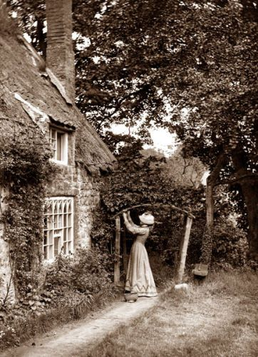Photo of Frank Meadow Sutcliffe – Victorian Photographer. Taking pictures of trees and pl…