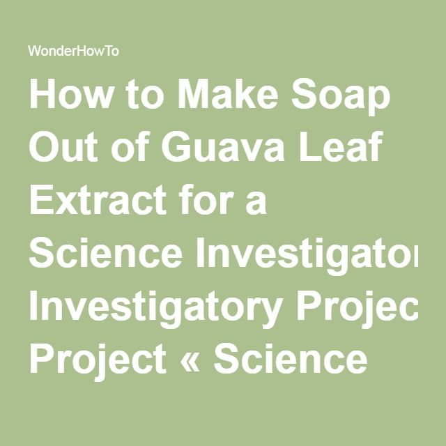 How to make soap out of guava leaf extract for a science how to make soap out of guava leaf extract for a science investigatory project solutioingenieria Gallery