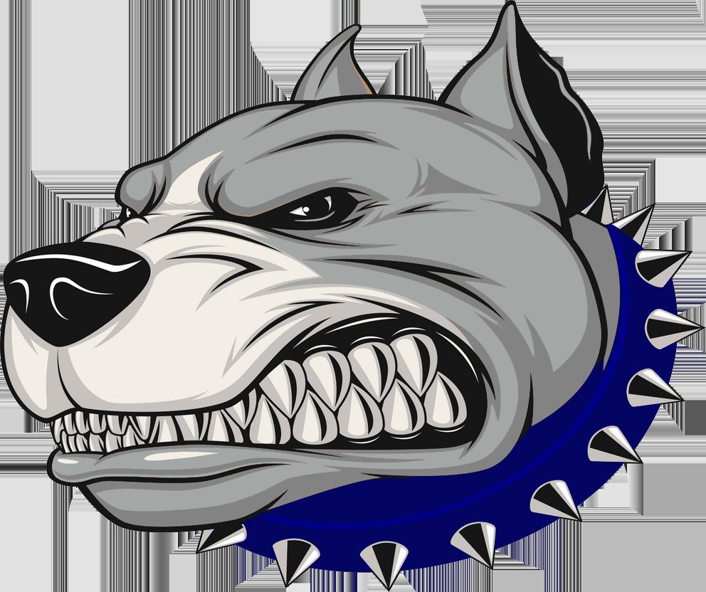 Naugatuck Valley Riverdawgs New England Football League Pitbull Art Dog Sketch Pitbull Drawing