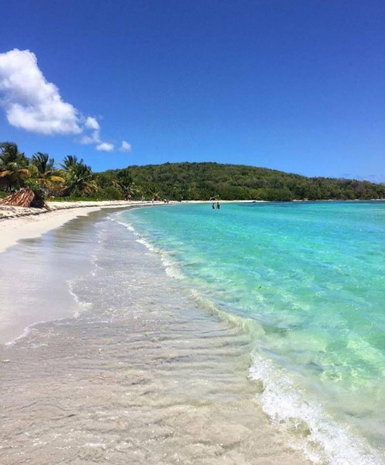Playa La Chiva Blue Beach Vieques Puerto Rico Usa