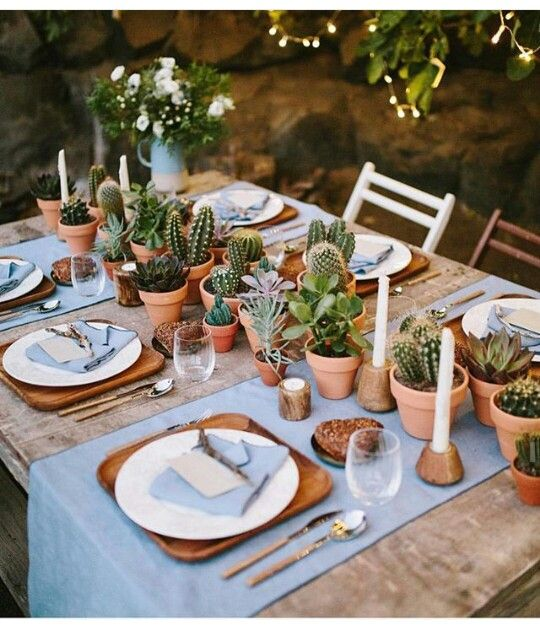 """cactus """"runner"""" as the centerpiece for a summer dinner with friends"""