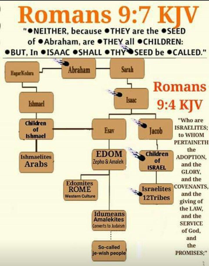 CSB Hebrew-Greek Key Word Study Bible, genuine leather ...