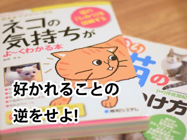 猫 よ け 効果 絶大 ブログ