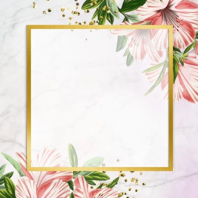 إطارات ذهبية تصميم الوردة الإطار تتفتح Png وملف Psd للتحميل مجانا Frames Design Graphic Rose Frame Graphic Design Background Templates