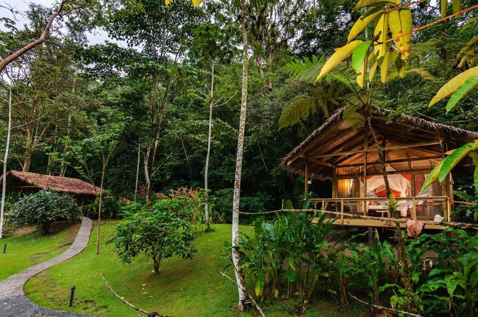 Pacuare Lodge is tucked deep within 25,000 acres of pristine, protected Costa Rican rain forest on the banks of the Pacuare River—and best accessed by white-water raft.