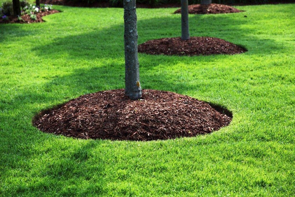 Massachusetts Bark Mulch, Topsoil and Stone Landscaping ...