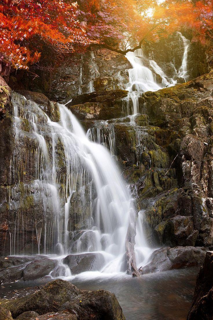 An Irish Waterfall in Autumn #BeautifulNature #Waterfalls #NaturePhotography…