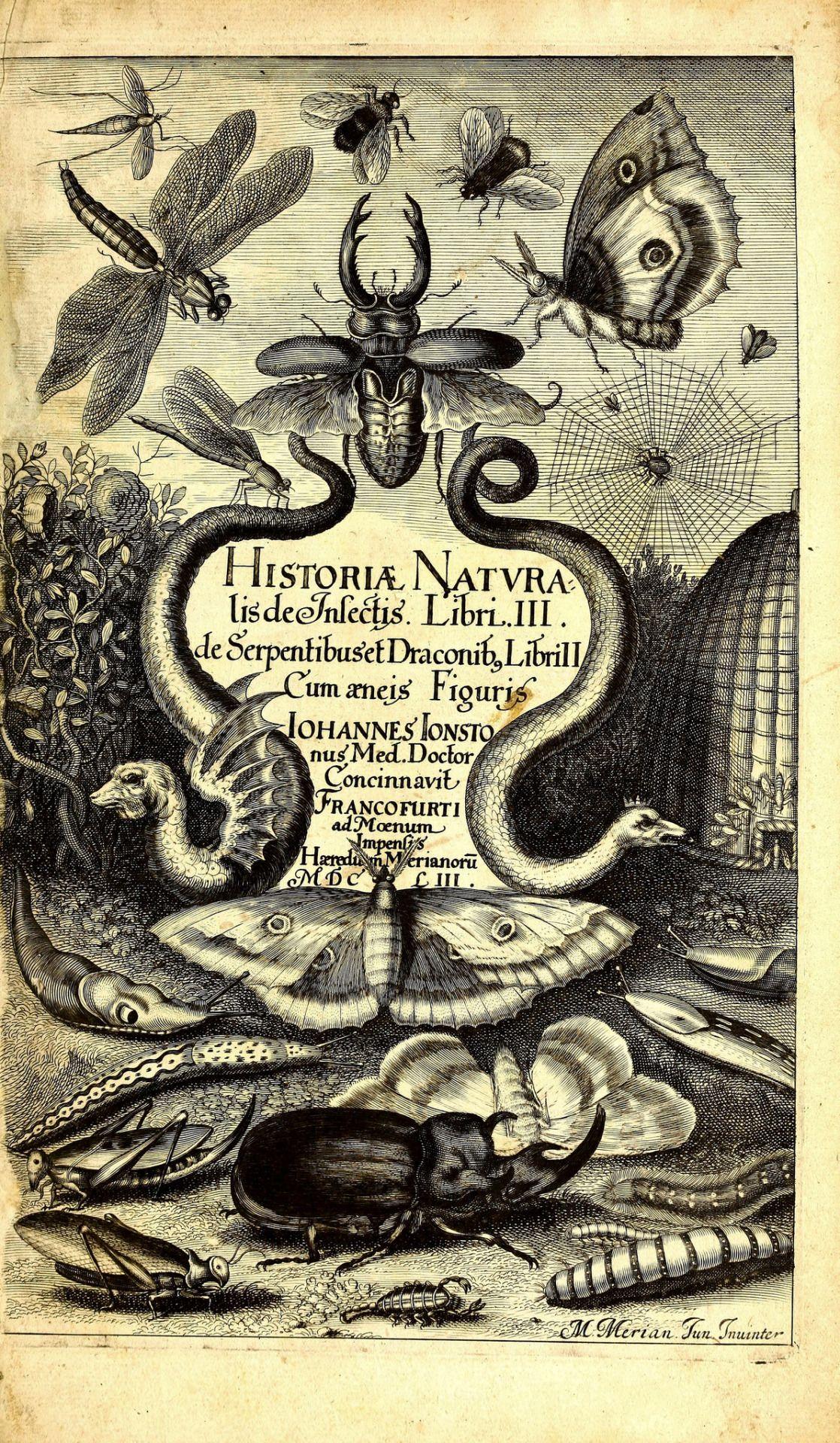 Natural History Of Mammals Birds Reptiles Amphibians