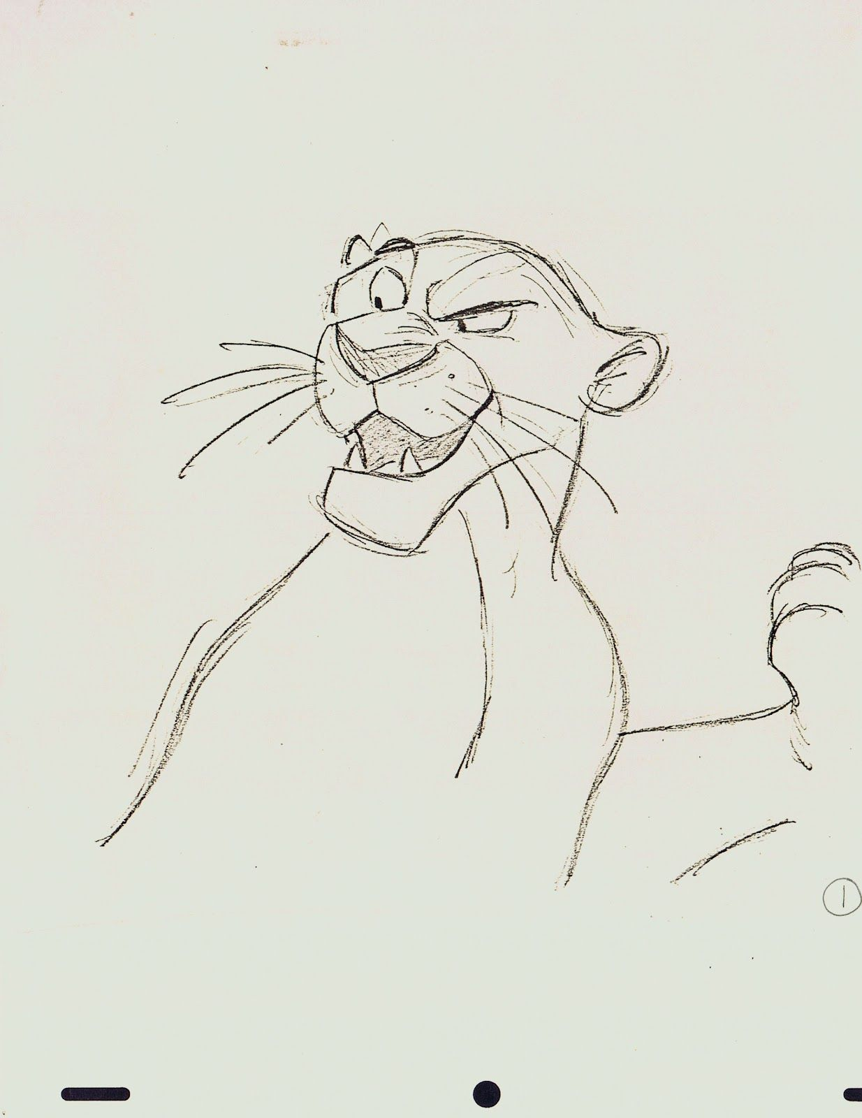 Bagheera jungle book animation sketches by milt kahl
