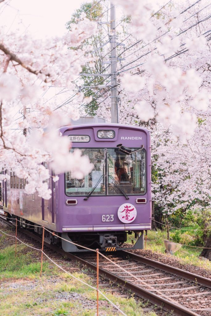25 Best Things to do in Kyoto, Japan • 2019 GUIDE