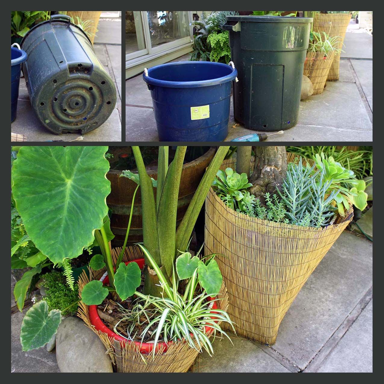 Affordable Ideas For Container Garden. Yay!