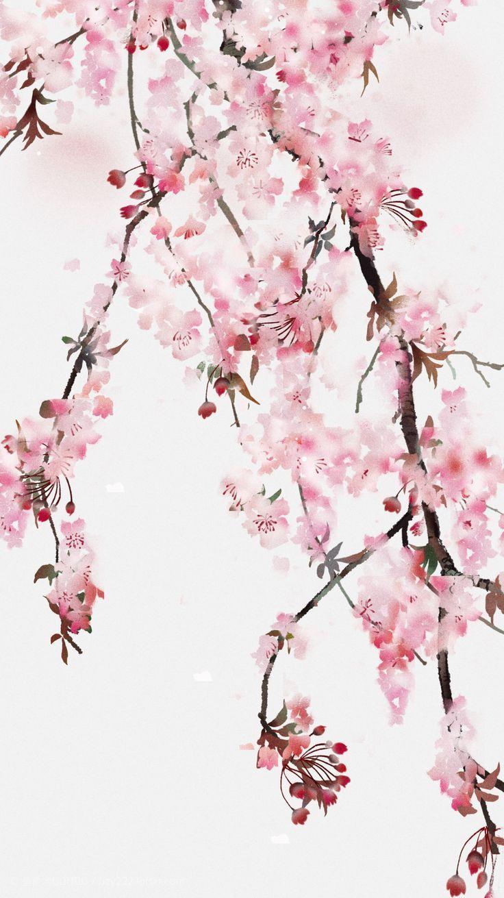 Watercolor Cherry Blossoms Cherry Blossom Watercolor Watercolor Paintings Tutorials Watercolor Flowers Tutorial