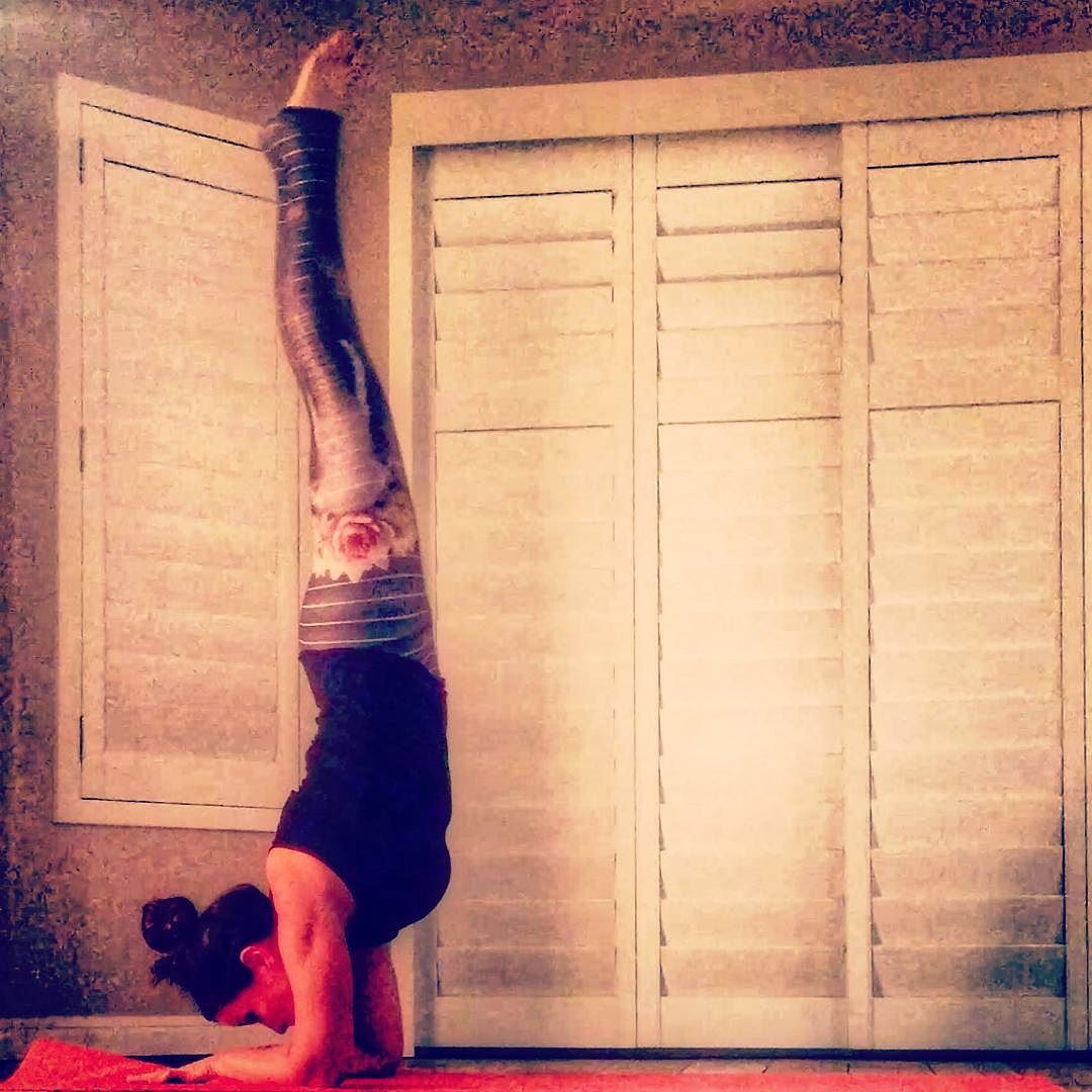 Day 8 #beginneryoga2015 #Dolphinplank to forearm stand @beachyogagirl @kinoyoga @mantraband @warriorsforhealing #yogaforcharity #yogaeveryday #yogacommunity #yogalove #igyoga #justbreathe by kellie_wirth_yoga